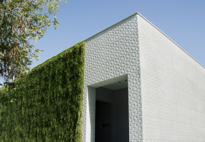 Lithos Desing and green wall
