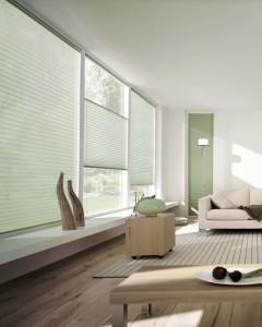 Tende plissettate sono una soluzione perfetta per le verande ma non solo: grazie alla loro versatilità, possono essere applicate a finestre di ogni forma e dimensione, fatte su misura per aderire a qualsiasi spazio.