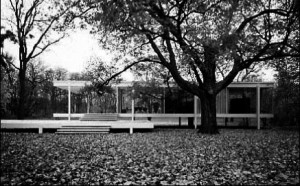 Farnsworth House, la casa isolata nel verde.