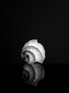 MENDORI by Issey Miyake +  Reality Lab._2