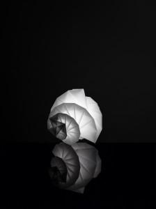 MENDORI by Issey Miyake + Reality Lab.
