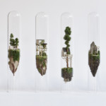 Micro Matter Miniature Sculptures in Glass Test Tubes