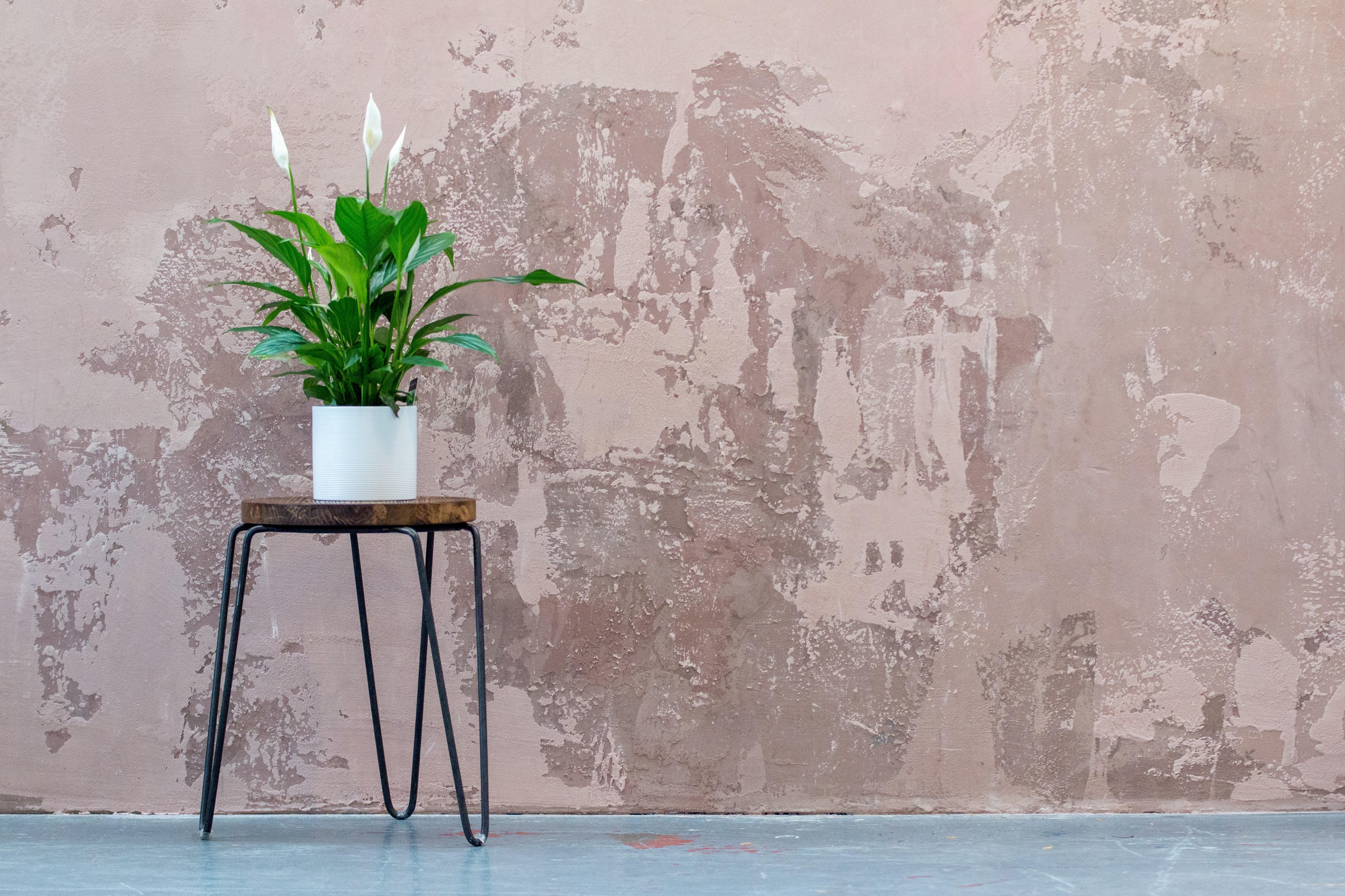 Pittura Effetto Intonaco Invecchiato affresco digitale: la nuova frontiera nella decorazione